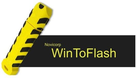 wintoflash-windows8-logo-endang