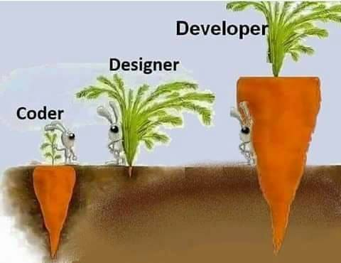 code-designer-developer
