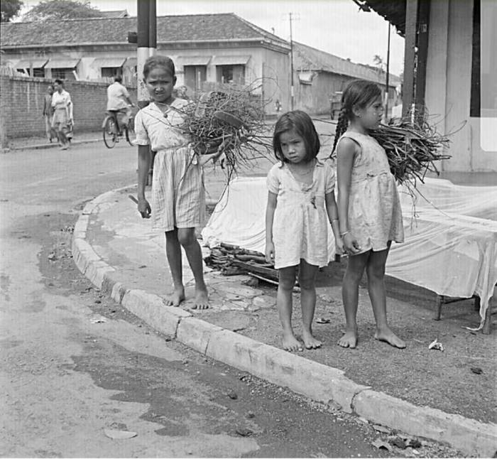 foto-anak-yang-sedang-mengumpulkan-ranting-bahan-bakar